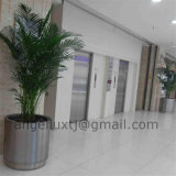 2016 New Design Stainless Steel Flower Pot para o Hotel Office Hall