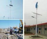 Срока службы гарантированности 20years оси 2years генератора ветра Tubine 400W ветра система вертикального Ветр-Солнечная