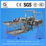 Waschende und entwässernmaschine der Stachelbeere-Lj-500