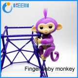 작은 물고기 대화식 아기는 지능적인 다채로운 핑거 원숭이를 Monkeys