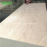 Commerciële Triplex van de Populier van de Kern van het Timmerhout van China Linyi Manufactory het Harde Houten