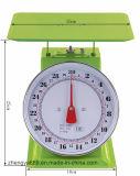حارّة يبيع في فليبين [30كغ] [مشنيكل] مزولة قرص [سبيرنغ] مقياس ميزان