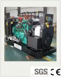 Planta de energía de biogás Setwith generador de la ISO (170kw).