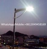 30W tutto in un indicatore luminoso solare del giardino del fornitore di illuminazione