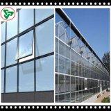 Geïsoleerdw Glas voor Cunstruction