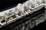 Импортировать японский Nickelsilver Органа Professional Флейты