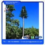 As telecomunicações de quanto antena da árvore de pinho camuflar do mastro de WiFi se elevam