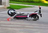 CEE Aprobado plegable portátil Cityway 500W Scooter E