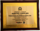 La Chine Cost-Effecitive Diamond Pastilles de disque de meulage des particules de finition