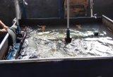 Diversos Wader Wader de Nylon, PVC, la moda pecho limícolas, pesca, captura Wader Wader Wader, los productos marinos, resistente al agua está bien ventilado Wader, Pesca limícolas