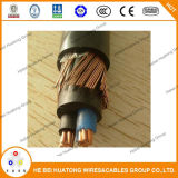 0.6/1kv 1*10AWG+10AWG isolation XLPE multibrins en cuivre recuit de gaine en PVC Câbles concentriques