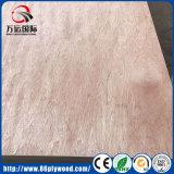 Madera contrachapada de Bintangor/madera contrachapada de Okoume/madera contrachapada comercial/madera contrachapada Shuttering con el grado de BB/CC