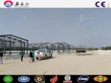 Chicken를 위한 Prefabricated Low Cost Steel Poultry Shed
