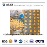 고무 같은 사탕은 고무 같은 GMP 환경의 밑에 제조 인 보충교재이다