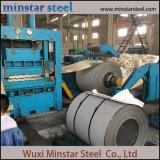 Het duplex Blad van het Roestvrij staal van het Blad van het Roestvrij staal Decoratieve