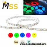 LED de alto brilho 2835 Stripe 60LEDs/M 12W/M 5m