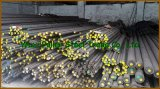 ASTM A276 304 Roestvrij staal Bar in Stock