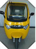 Motocicleta da roda do triciclo três do passageiro
