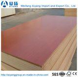 Couleur/solides de haute qualité du grain du bois de la Mélamine MDF face du papier