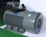 Moteur électrique triphasé à C.A. 10HP d'admission avec l'homologation de la CE