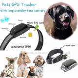 Animale domestico di vendita caldo GPS che segue con il collare (EV-200)