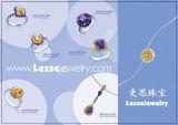 Juwelen Vastgesteld (f)