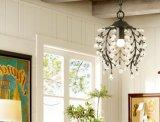 Хрустальные люстры и потолочные светильники, кристально пульт управления освещением, потолочного освещения арматуры 3 Фонари затенения