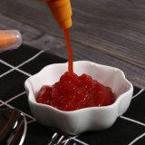 500 g de purée de pâte de tomate en bouteille d'épices sauce Tomato Ketchup