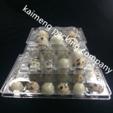 China Wholesale 12PCS Holes Plastic Quail Egg Bandejas Caixa para Quail Egg Package
