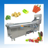 PT-2000 trägt Blattgemüse-Dampfbleichen-Maschine mit 500-1500kg/H Früchte