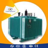 transformateurs immergés dans l'huile de maintenance libre approuvée du CEI 800kVA