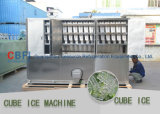 Máquina del fabricante del cubo de hielo con capacidad diaria ~ de 1 tonelada 20 toneladas por día