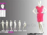 Mannequins femminili di modo per il vestito