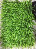 Piante di alta qualità e fiori artificiali delle stuoie artificiali Gu1123121729 dell'erba