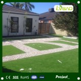 정원과 홈을%s 반대로 UV 조경 훈장 합성 인공적인 잔디