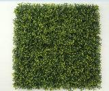 Vertikale Boxwood-Gras-Plastikpanels für Wandverkleidungs-Dekoration