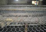 めっきされる電流を通された、Hot-DIP亜鉛PVCによって塗られる六角形ワイヤー網