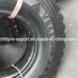Neumático Militar 255 / 100r16 Yellow Sea Marca Neumático Iveco Radial Tire