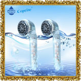 Les filtres de professionnels de la tête de douche