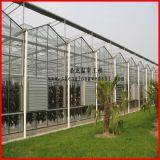 중국 판매를 위한 다중 경간 Commerical Venlo 유리제 온실