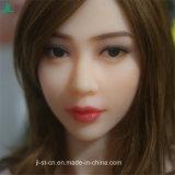 細い女の子の性の人形のJl 165cmの高さのハイエンドプラシ天の適正価格