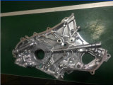 Nuova pompa dell'olio per motori per Nissan Navara Yd22/Yd25 (OEM #: 15010-VK500)