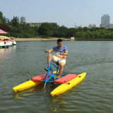 호수 물 운동 자전거