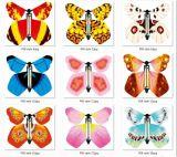 Folheto de Magic Butterfly (M8004)