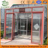 Cubierta de vidrio de estructura de acero galvanizado Invernaderos comerciales usados