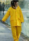 Vestito dell'impermeabile del PVC delle signore di modo, protezione Labor Raincoatrm-01)