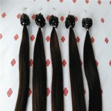 Micro capelli dell'anello di estensioni pre legate superiori dei capelli