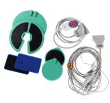저주파 펄스 물리 치료 개화 장비