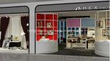 Bolso Shopfitting, visualización de las señoras de la manera del bolso