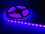 5050 LED Strip mit Tube Waterproof